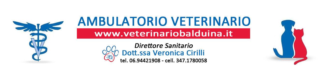 Veterinario Balduina